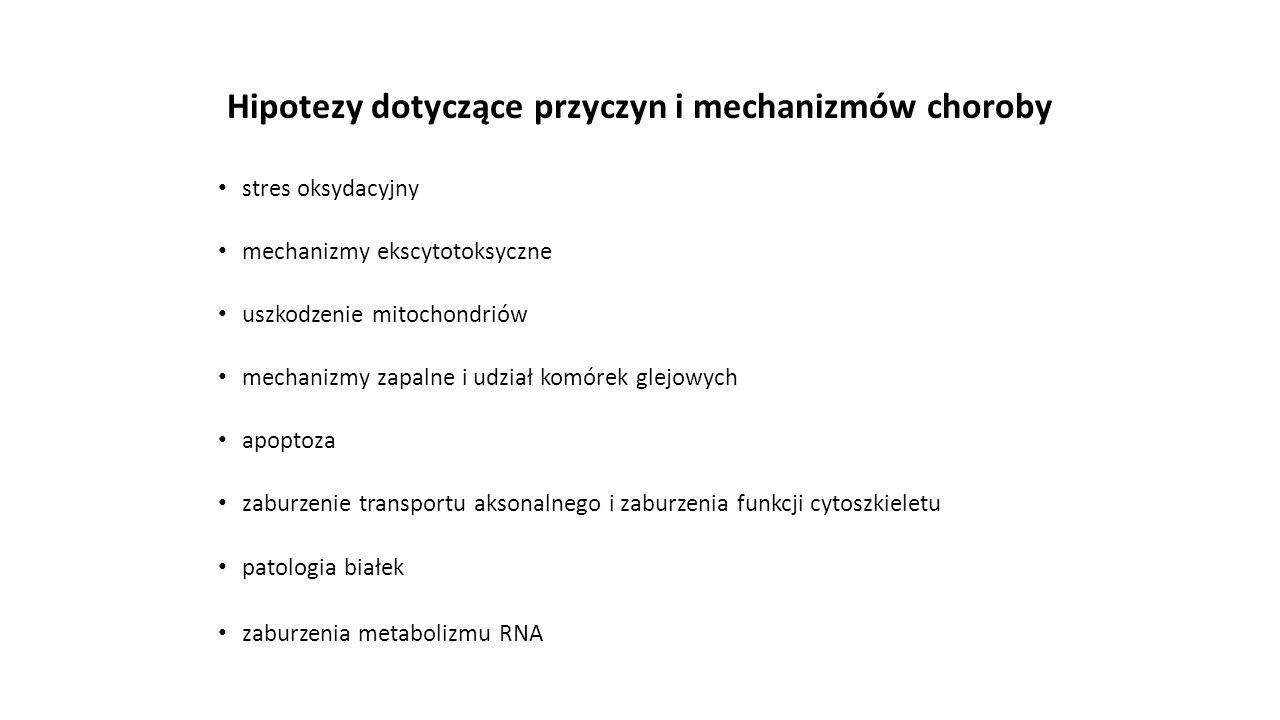 Hipotezy dotyczące przyczyn i mechanizmów choroby stres oksydacyjny mechanizmy ekscytotoksyczne uszkodzenie mitochondriów mechanizmy zapalne i udział