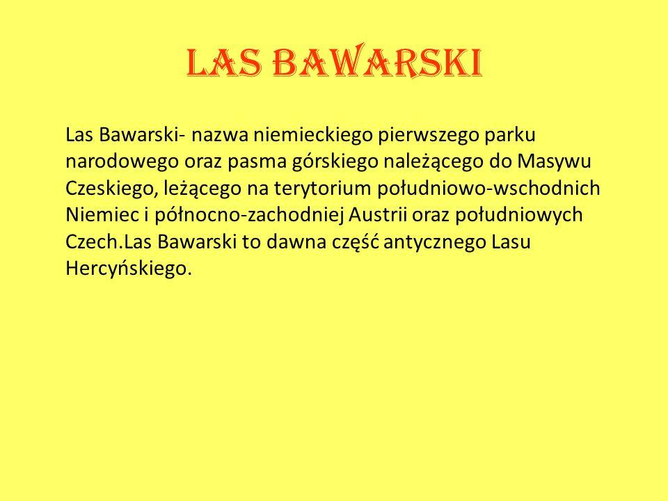 Las bawarski Las Bawarski- nazwa niemieckiego pierwszego parku narodowego oraz pasma górskiego należącego do Masywu Czeskiego, leżącego na terytorium