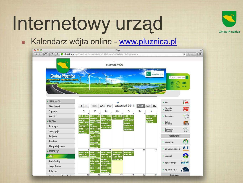 Internetowy urząd Budżet gminy online Gmina Płużnica