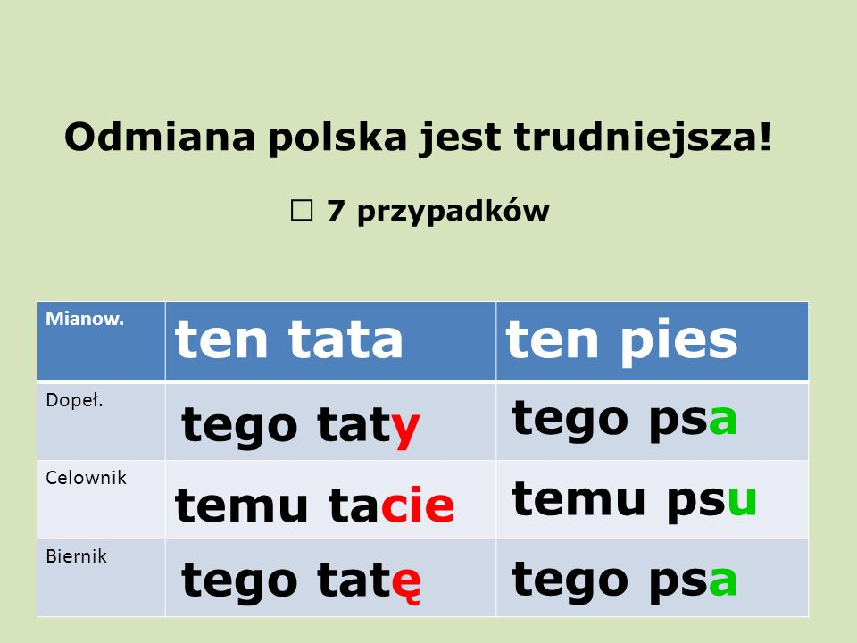 Odmiana polska jest trudniejsza!  7 przypadków Mianow. ten tataten pies Dopeł. Celownik Biernik tego taty temu tacie tego tatętego psa temu psu tego