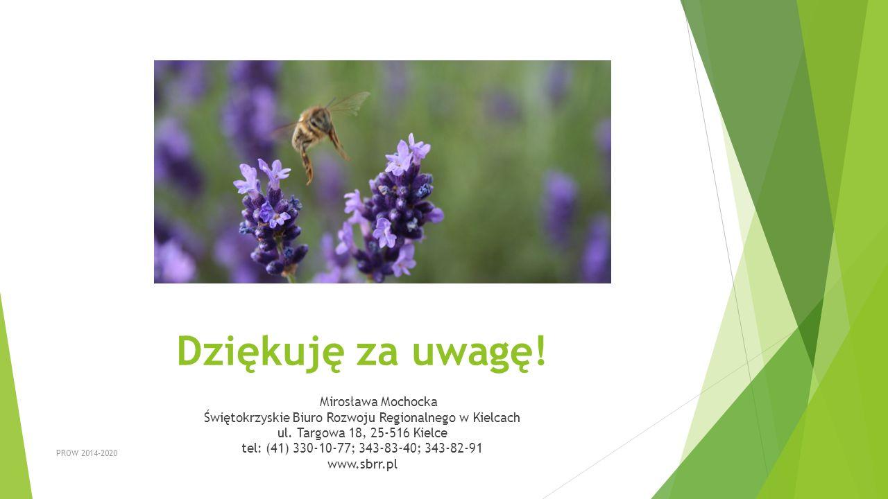 Dziękuję za uwagę! Mirosława Mochocka Świętokrzyskie Biuro Rozwoju Regionalnego w Kielcach ul. Targowa 18, 25-516 Kielce tel: (41) 330-10-77; 343-83-4