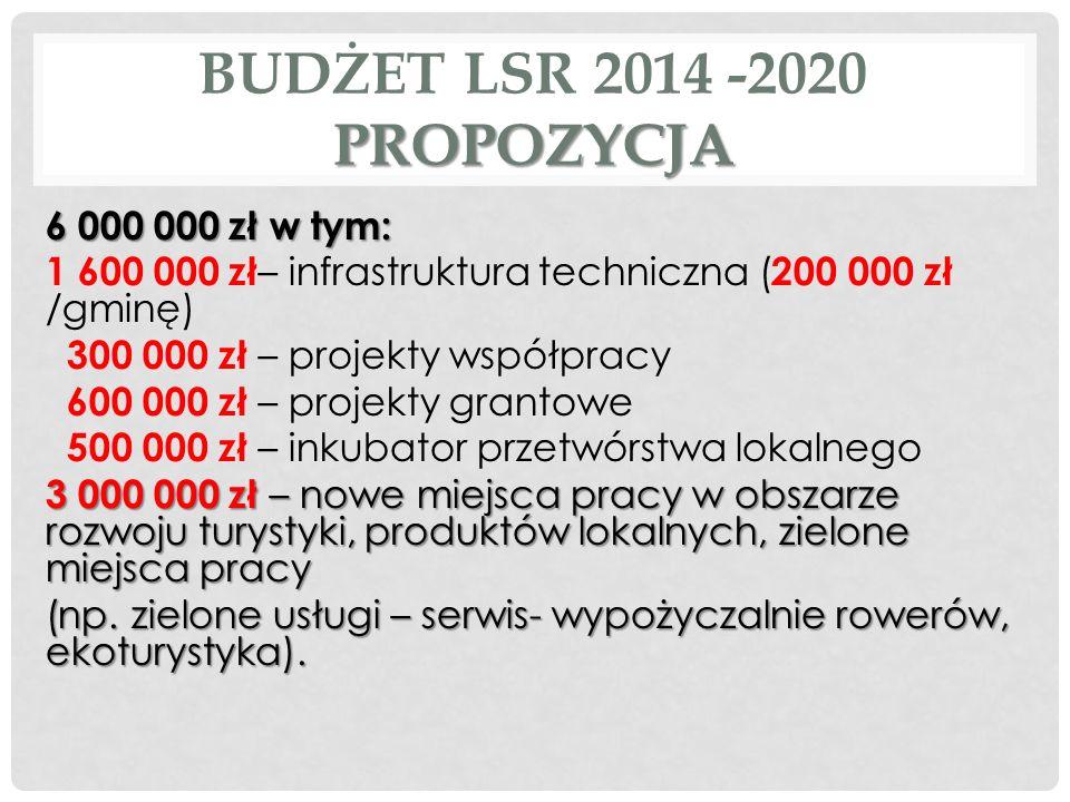 PROPOZYCJA BUDŻET LSR 2014 -2020 PROPOZYCJA 6 000 000 zł w tym: 1 600 000 zł – infrastruktura techniczna ( 200 000 zł /gminę) 300 000 zł – projekty ws