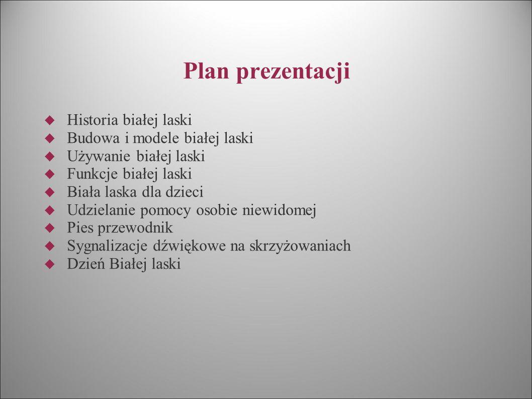 Plan prezentacji  Historia białej laski  Budowa i modele białej laski  Używanie białej laski  Funkcje białej laski  Biała laska dla dzieci  Udzi