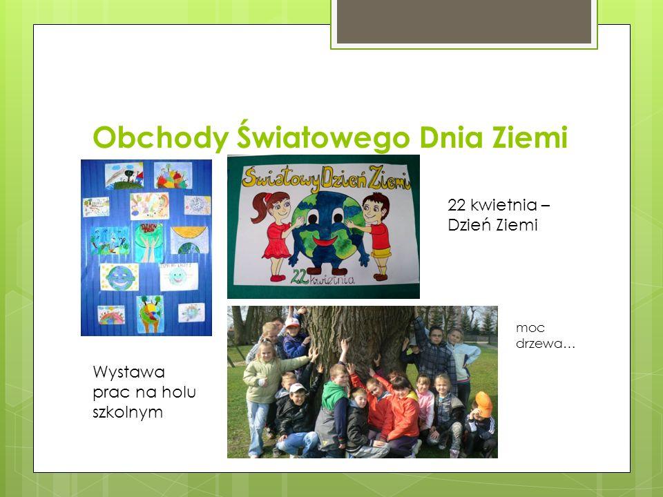 Obchody Światowego Dnia Ziemi 22 kwietnia – Dzień Ziemi Wystawa prac na holu szkolnym moc drzewa…