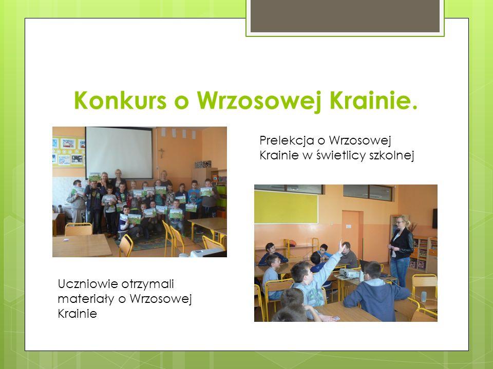 Konkurs o Wrzosowej Krainie. Prelekcja o Wrzosowej Krainie w świetlicy szkolnej Uczniowie otrzymali materiały o Wrzosowej Krainie