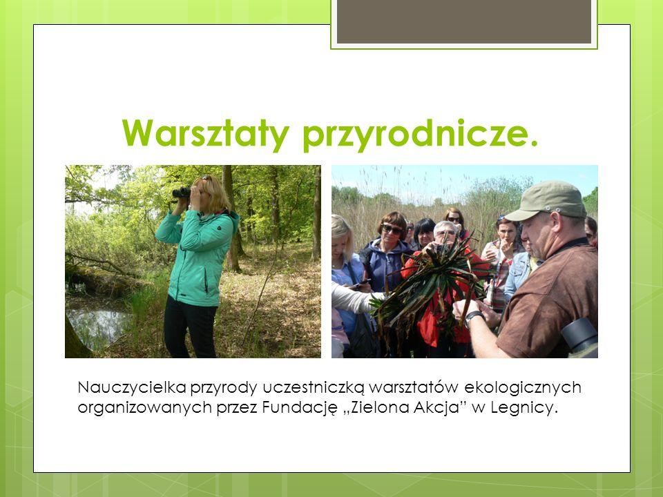 """Warsztaty przyrodnicze. Nauczycielka przyrody uczestniczką warsztatów ekologicznych organizowanych przez Fundację """"Zielona Akcja"""" w Legnicy."""