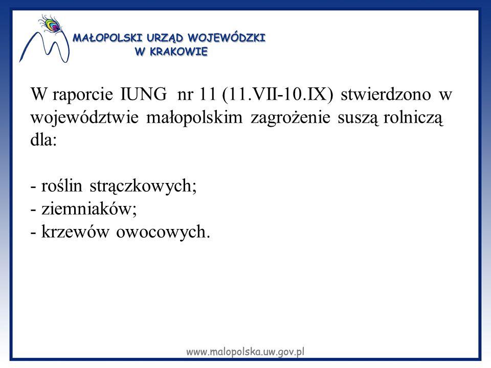 W raporcie IUNG nr 11 (11.VII-10.IX) stwierdzono w województwie małopolskim zagrożenie suszą rolniczą dla: - roślin strączkowych; - ziemniaków; - krze