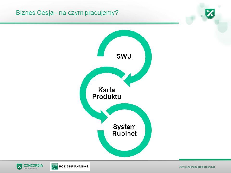 Biznes Cesja - na czym pracujemy? SWU Karta Produktu System Rubinet