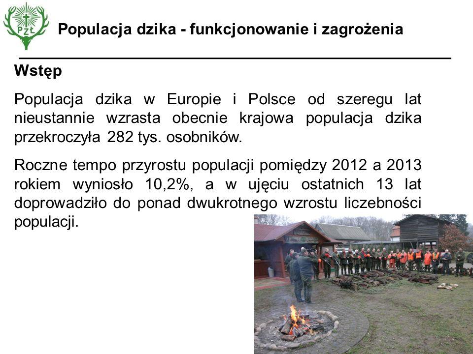 Wstęp Populacja dzika w Europie i Polsce od szeregu lat nieustannie wzrasta obecnie krajowa populacja dzika przekroczyła 282 tys. osobników. Roczne te