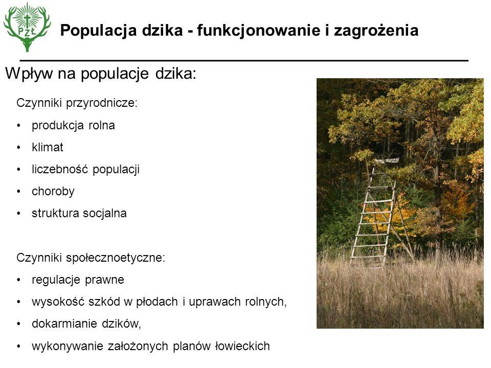 Wpływ na populacje dzika: Czynniki przyrodnicze: produkcja rolna klimat liczebność populacji choroby struktura socjalna Czynniki społecznoetyczne: reg