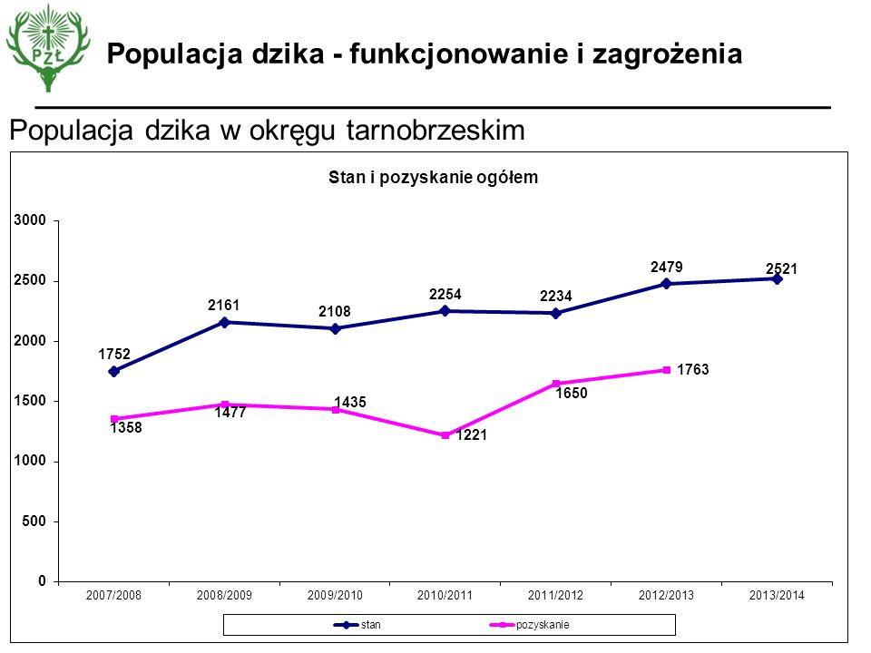 Populacja dzika w okręgu tarnobrzeskim Populacja dzika - funkcjonowanie i zagrożenia