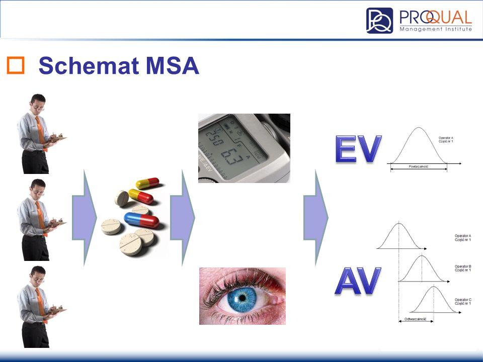  Schemat MSA