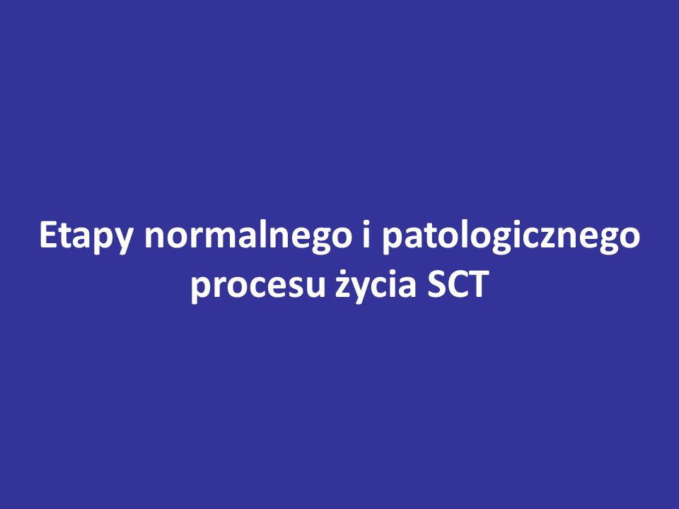 Etapy normalnego i patologicznego procesu życia SCT