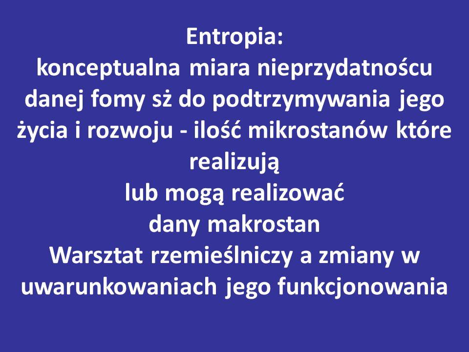 Entropia: konceptualna miara nieprzydatnoścu danej fomy sż do podtrzymywania jego życia i rozwoju - ilość mikrostanów które realizują lub mogą realizować dany makrostan Warsztat rzemieślniczy a zmiany w uwarunkowaniach jego funkcjonowania