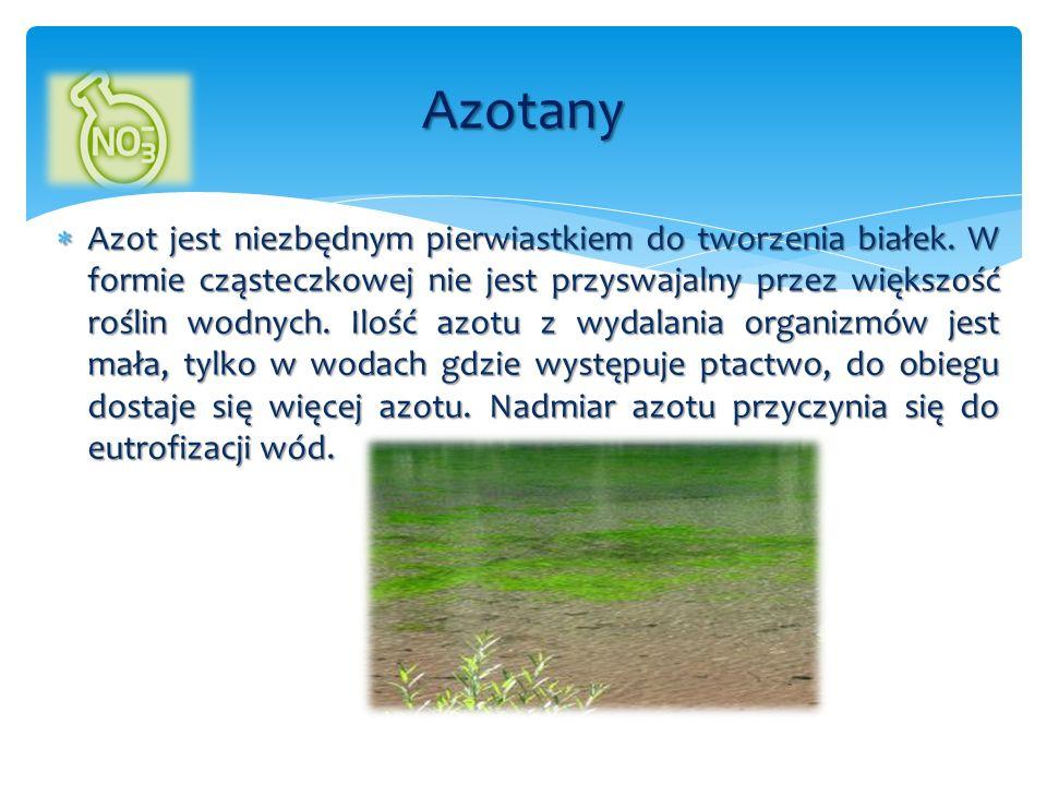  Azot jest niezbędnym pierwiastkiem do tworzenia białek. W formie cząsteczkowej nie jest przyswajalny przez większość roślin wodnych. Ilość azotu z w