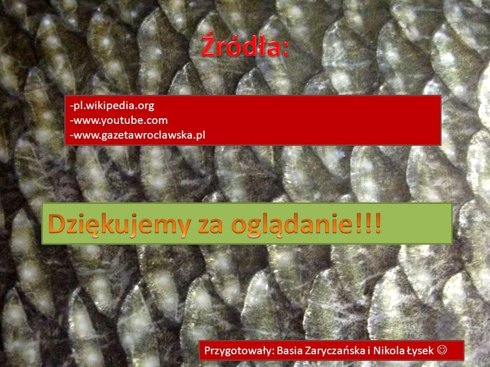 -pl.wikipedia.org -www.youtube.com -www.gazetawroclawska.pl Przygotowały: Basia Zaryczańska i Nikola Łysek