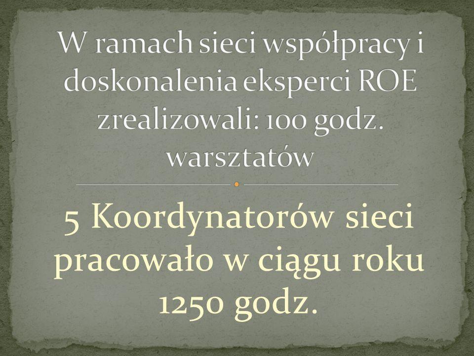 5 Koordynatorów sieci pracowało w ciągu roku 1250 godz.