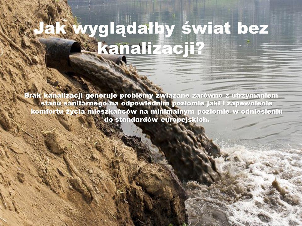 Jak wyglądałby świat bez kanalizacji? Brak kanalizacji generuje problemy związane zarówno z utrzymaniem stanu sanitarnego na odpowiednim poziomie jaki