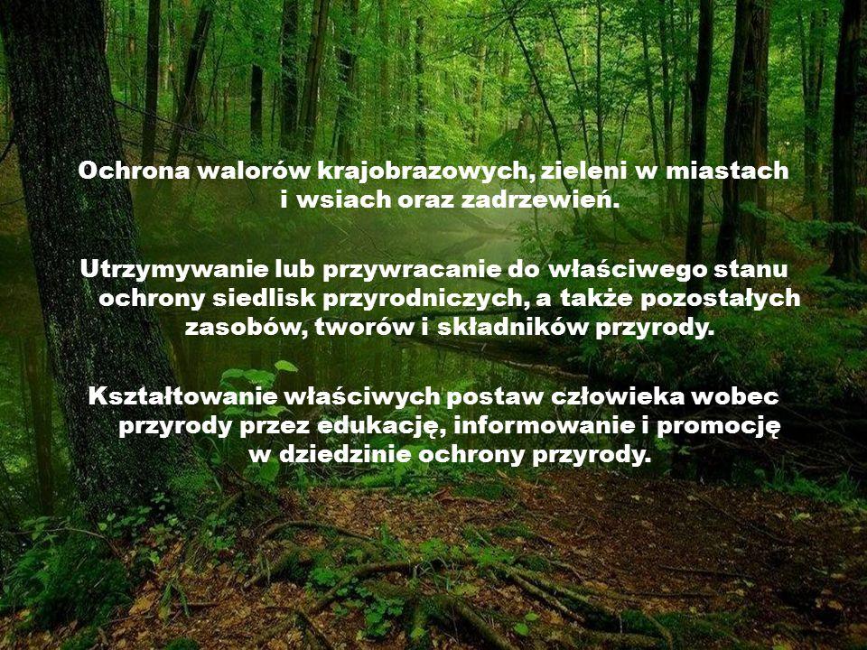 Ochrona walorów krajobrazowych, zieleni w miastach i wsiach oraz zadrzewień. Utrzymywanie lub przywracanie do właściwego stanu ochrony siedlisk przyro