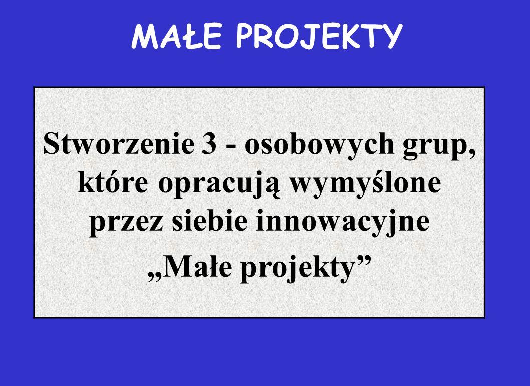 """MAŁE PROJEKTY Stworzenie 3 - osobowych grup, które opracują wymyślone przez siebie innowacyjne """"Małe projekty"""