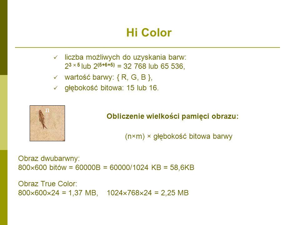 Hi Color liczba możliwych do uzyskania barw: 2 3  5 lub 2 (5+6+5) = 32 768 lub 65 536, wartość barwy: { R, G, B }, głębokość bitowa: 15 lub 16.