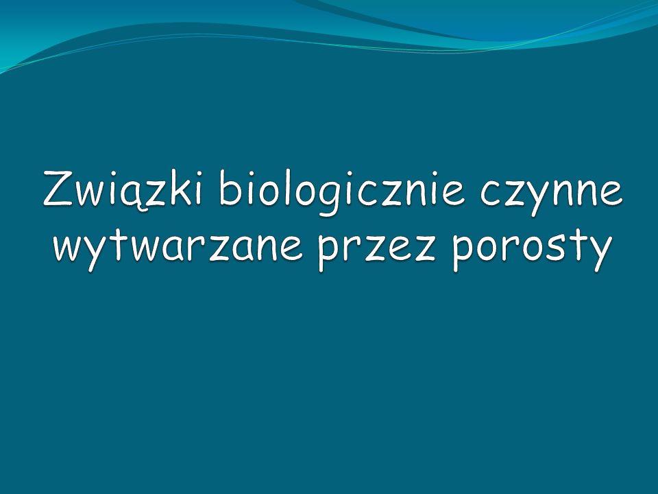 Porosty (Lichenes) Organizmy symbiotyczne; Plechowce; Wytwarzają specyficzne substancje – brak u roślin wyższych; 800 metabolitów wtórnych; Wykorzystywane w medycynie naturalnej oraz jako bioindykatory; 13 500 gatunków na świecie 1 554 gatunki w Polsce Cetraria islandica Diploicia canescens