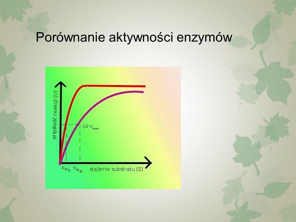 Porównanie aktywności enzymów