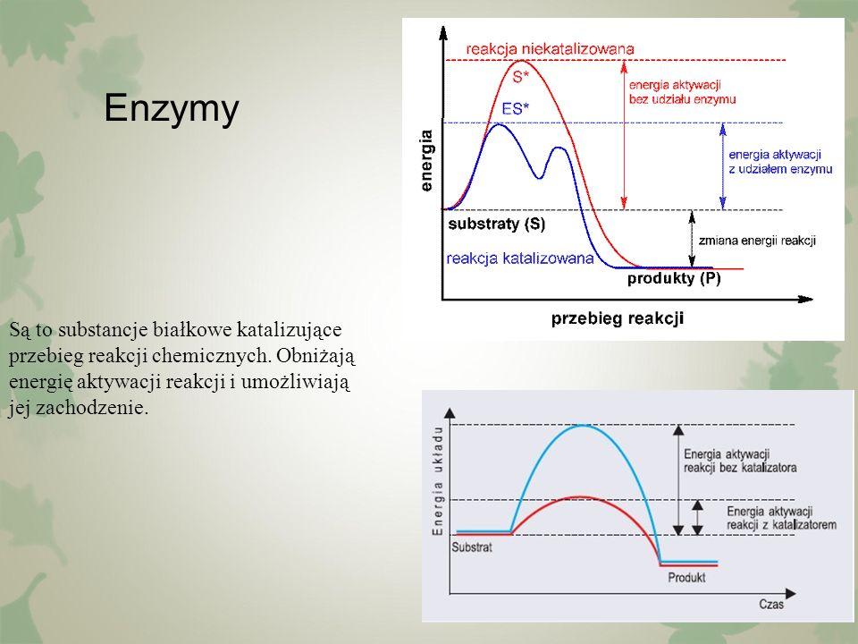 Enzymy Są to substancje białkowe katalizujące przebieg reakcji chemicznych. Obniżają energię aktywacji reakcji i umożliwiają jej zachodzenie.