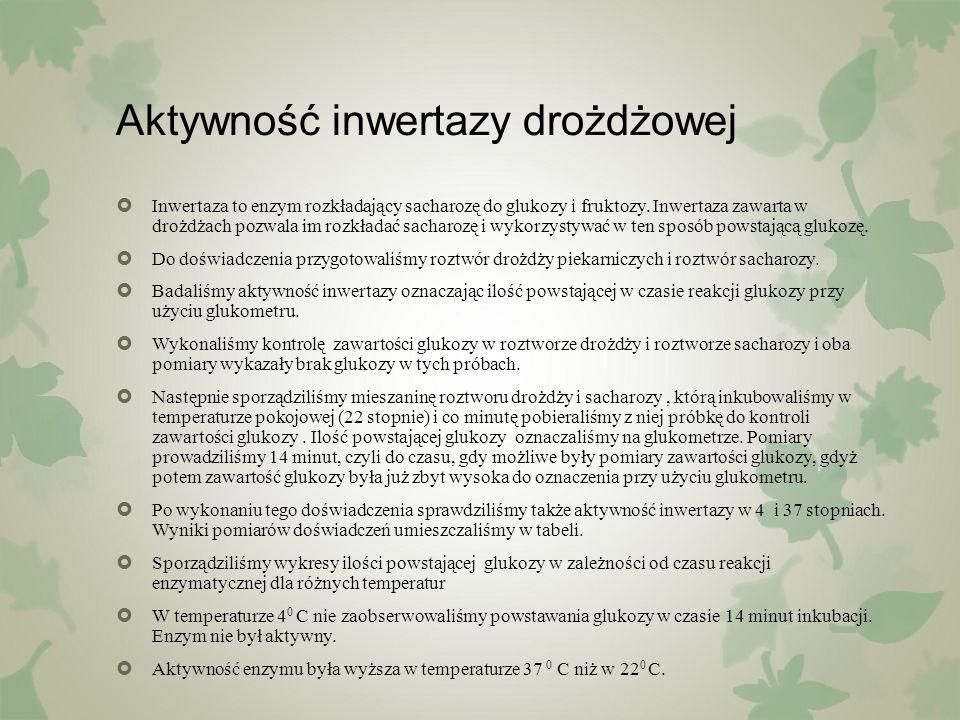 Aktywność inwertazy drożdżowej  Inwertaza to enzym rozkładający sacharozę do glukozy i fruktozy. Inwertaza zawarta w drożdżach pozwala im rozkładać s