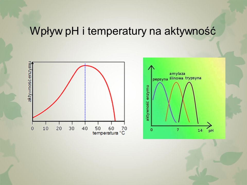 Wpływ pH i temperatury na aktywność