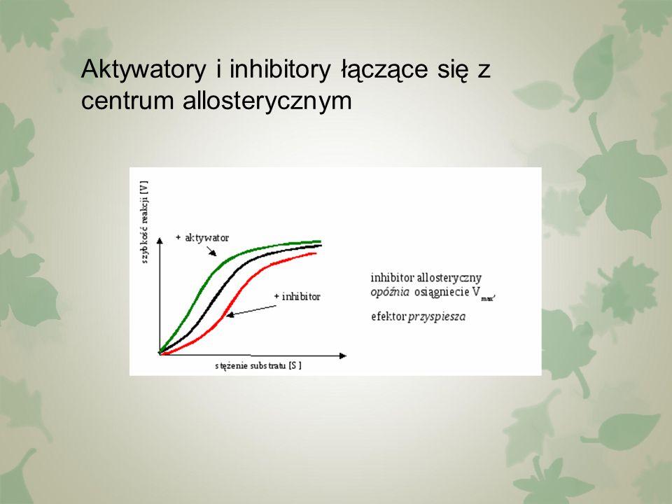Aktywatory i inhibitory łączące się z centrum allosterycznym