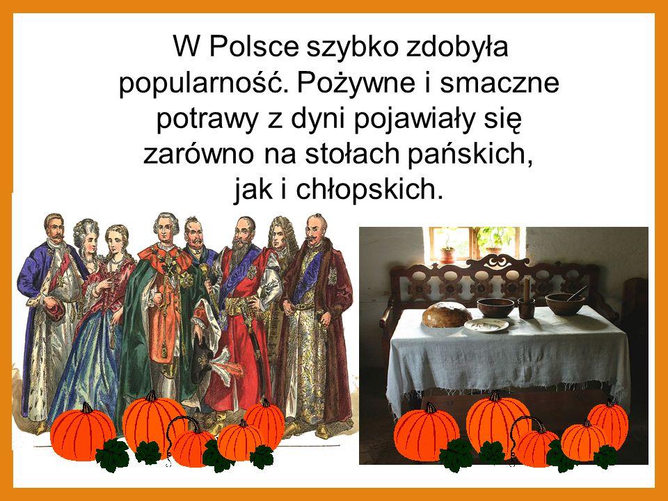 W Polsce szybko zdobyła popularność. Pożywne i smaczne potrawy z dyni pojawiały się zarówno na stołach pańskich, jak i chłopskich.