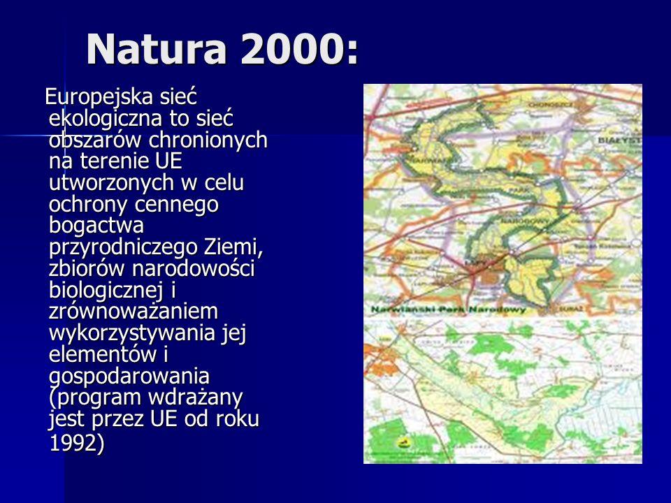 Natura 2000: Europejska sieć ekologiczna to sieć obszarów chronionych na terenie UE utworzonych w celu ochrony cennego bogactwa przyrodniczego Ziemi, zbiorów narodowości biologicznej i zrównoważaniem wykorzystywania jej elementów i gospodarowania (program wdrażany jest przez UE od roku 1992) Europejska sieć ekologiczna to sieć obszarów chronionych na terenie UE utworzonych w celu ochrony cennego bogactwa przyrodniczego Ziemi, zbiorów narodowości biologicznej i zrównoważaniem wykorzystywania jej elementów i gospodarowania (program wdrażany jest przez UE od roku 1992)