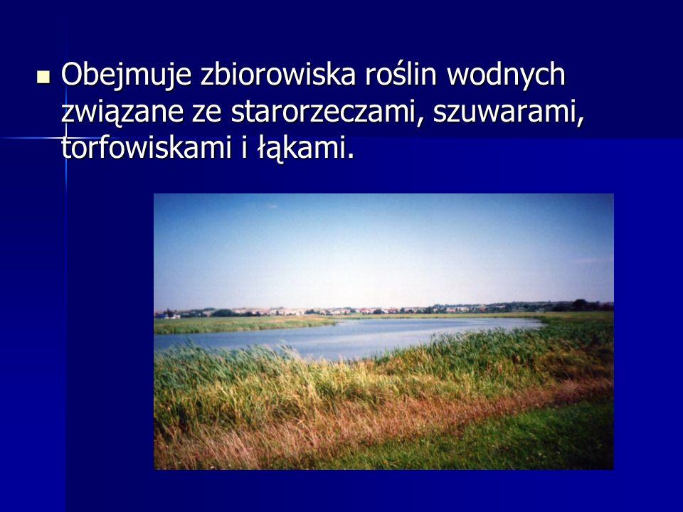 Obejmuje zbiorowiska roślin wodnych związane ze starorzeczami, szuwarami, torfowiskami i łąkami. Obejmuje zbiorowiska roślin wodnych związane ze staro
