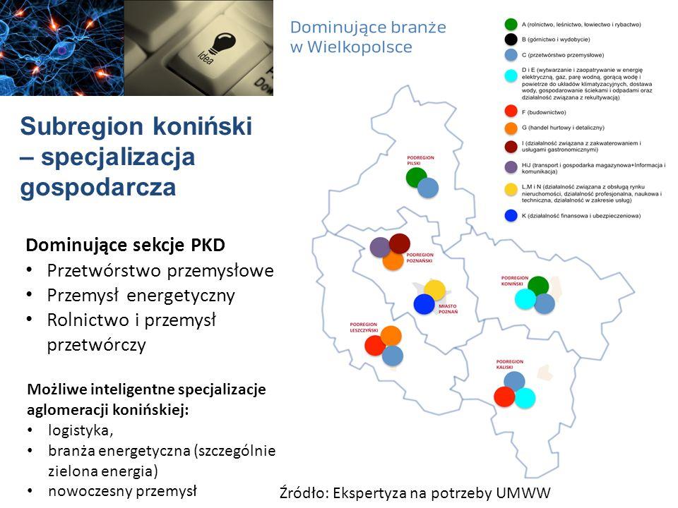 Subregion koniński – specjalizacja gospodarcza Dominujące sekcje PKD Przetwórstwo przemysłowe Przemysł energetyczny Rolnictwo i przemysł przetwórczy Ź