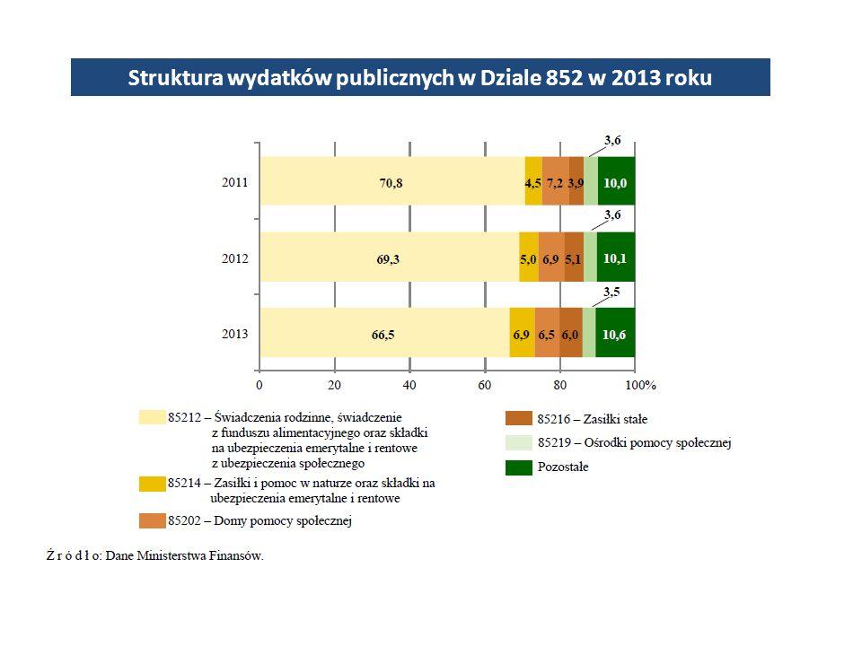 Struktura wydatków publicznych w Dziale 852 w 2013 roku
