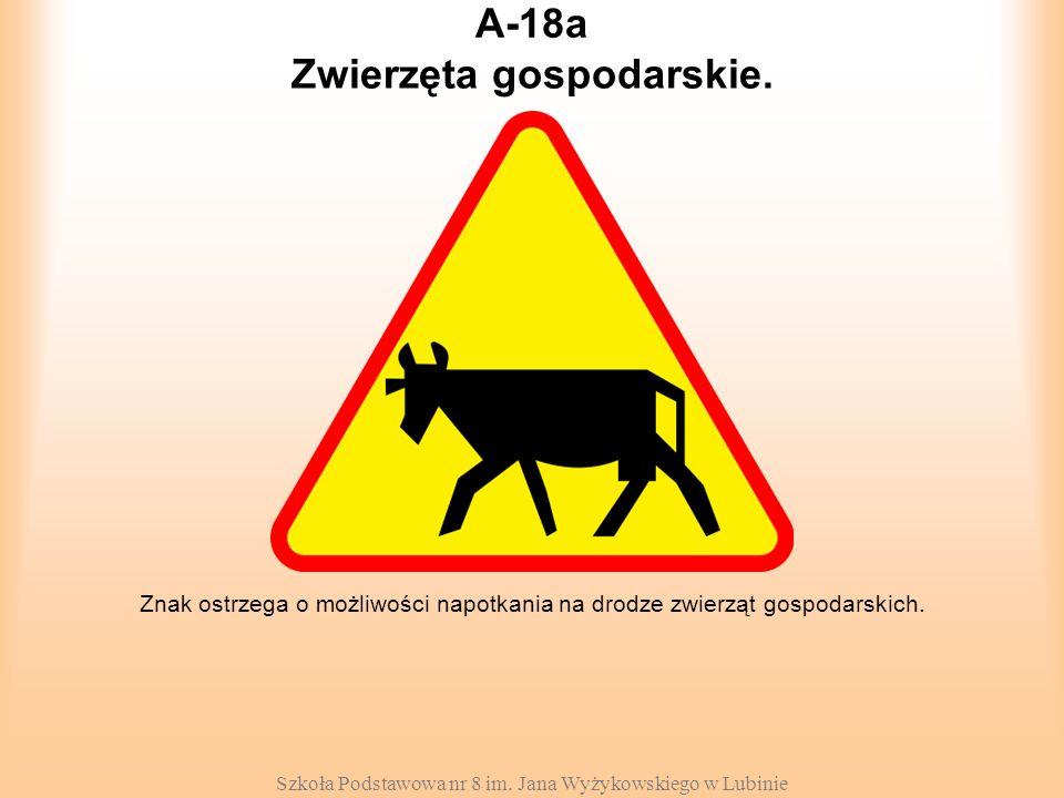 Szkoła Podstawowa nr 8 im. Jana Wyżykowskiego w Lubinie A-18a Znak ostrzega o możliwości napotkania na drodze zwierząt gospodarskich. Zwierzęta gospod