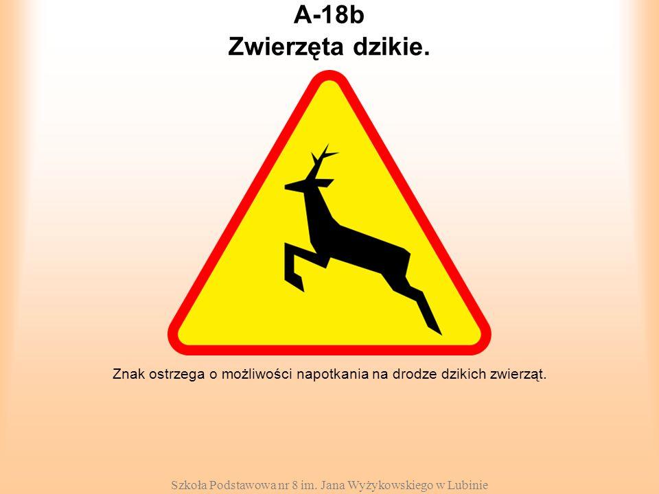 Szkoła Podstawowa nr 8 im. Jana Wyżykowskiego w Lubinie A-18b Znak ostrzega o możliwości napotkania na drodze dzikich zwierząt. Zwierzęta dzikie.