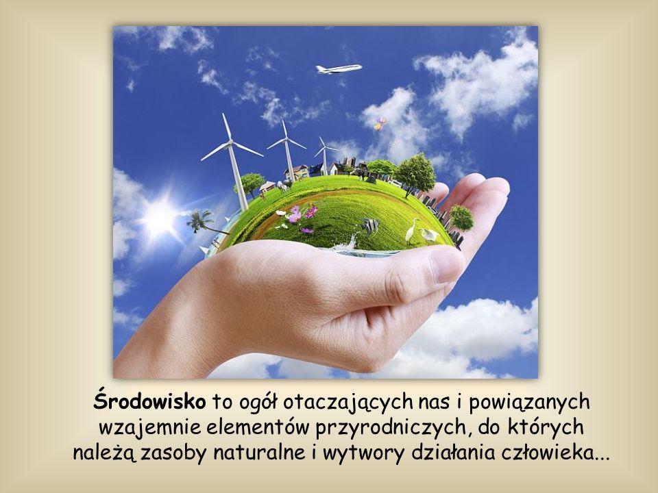 Środowisko to ogół otaczających nas i powiązanych wzajemnie elementów przyrodniczych, do których należą zasoby naturalne i wytwory działania człowieka