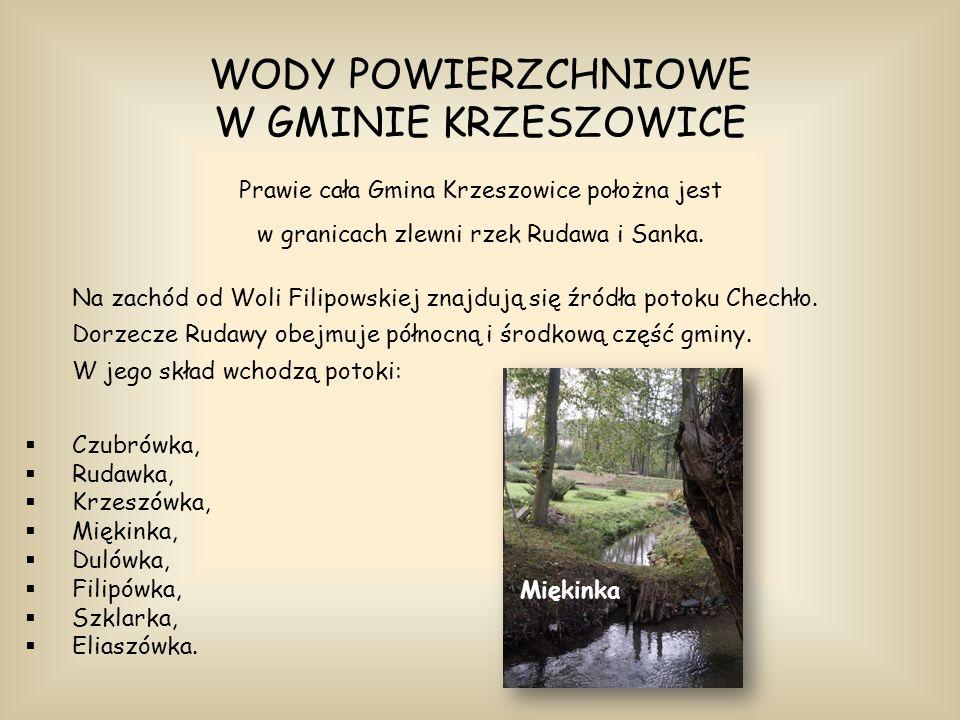 WODY POWIERZCHNIOWE W GMINIE KRZESZOWICE Prawie cała Gmina Krzeszowice położna jest w granicach zlewni rzek Rudawa i Sanka. Na zachód od Woli Filipows