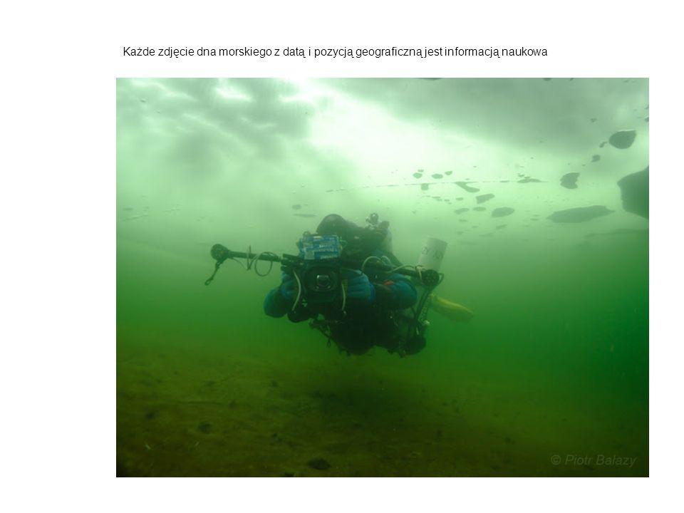 Każde zdjęcie dna morskiego z datą i pozycją geograficzną jest informacją naukowa