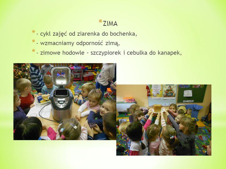 * ZIMA * - cykl zajęć od ziarenka do bochenka, * - wzmacniamy odporność zimą, * - zimowe hodowle – szczypiorek i cebulka do kanapek,