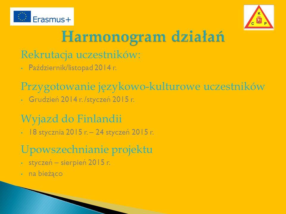 Rekrutacja uczestników: Październik/listopad 2014 r.