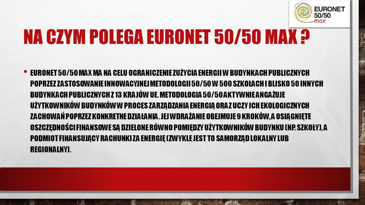 NA CZYM POLEGA EURONET 50/50 MAX .
