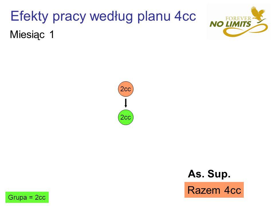 Efekty pracy według planu 4cc 2cc Grupa = 2cc Razem 4cc Miesiąc 1 As. Sup.