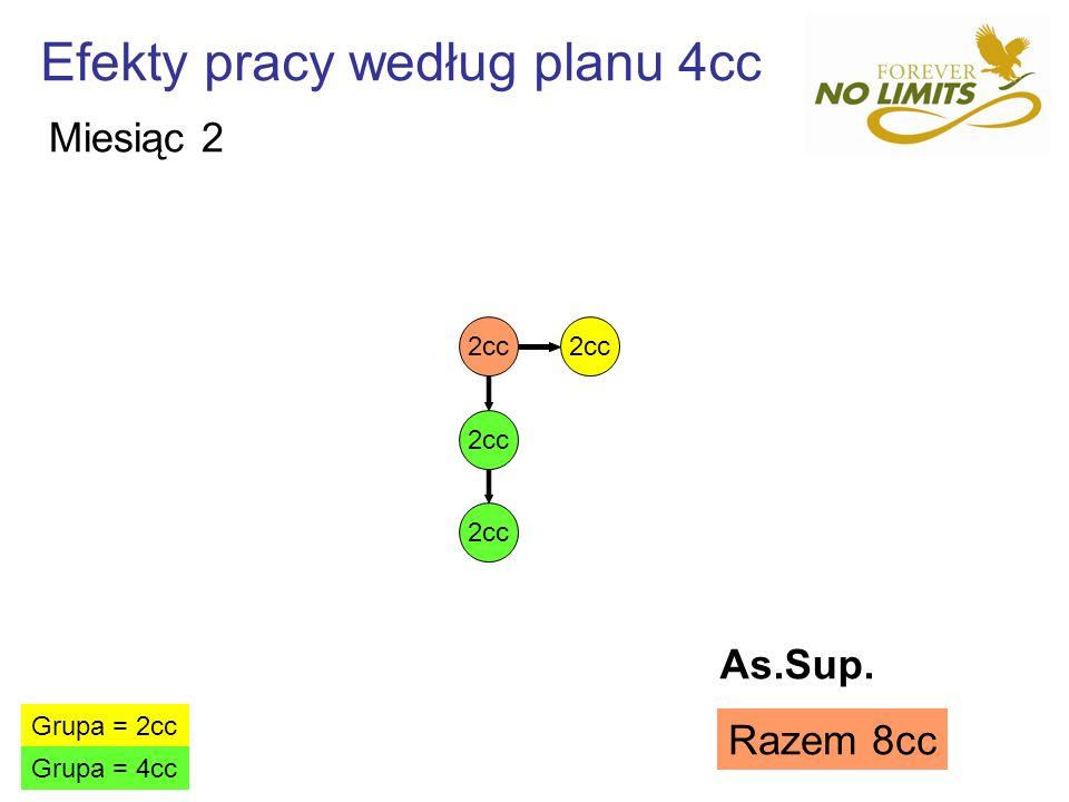 Efekty pracy według planu 4cc 2cc Grupa = 2cc Grupa = 4cc Razem 8cc Miesiąc 2 As.Sup.