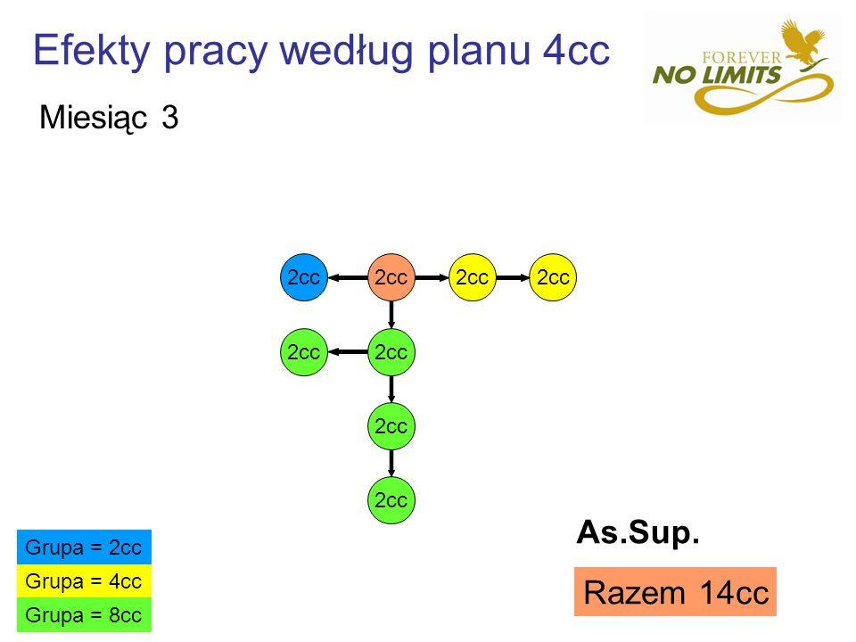 Efekty pracy według planu 4cc 2cc Grupa = 4cc Grupa = 2cc Grupa = 8cc Razem 14cc Miesiąc 3 As.Sup.