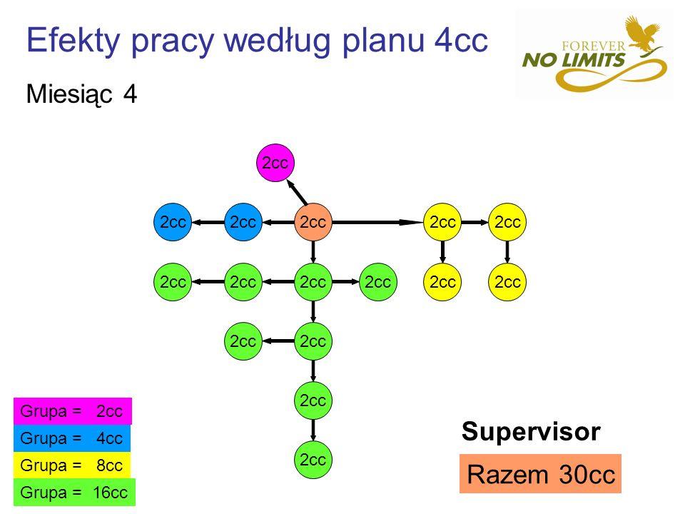 Efekty pracy według planu 4cc 2cc Grupa = 8cc Grupa = 4cc Grupa = 2cc Grupa = 16cc Razem 30cc Supervisor Miesiąc 4