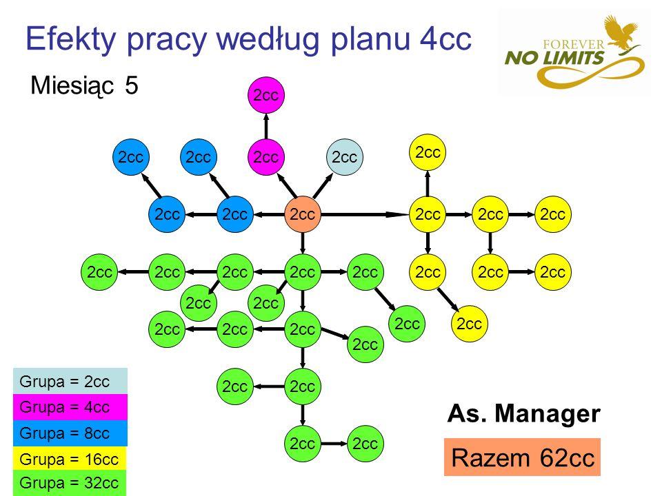 Efekty pracy według planu 4cc 2cc Grupa = 16cc Grupa = 8cc Grupa = 4cc Grupa = 2cc Grupa = 32cc Razem 62cc Miesiąc 5 As. Manager