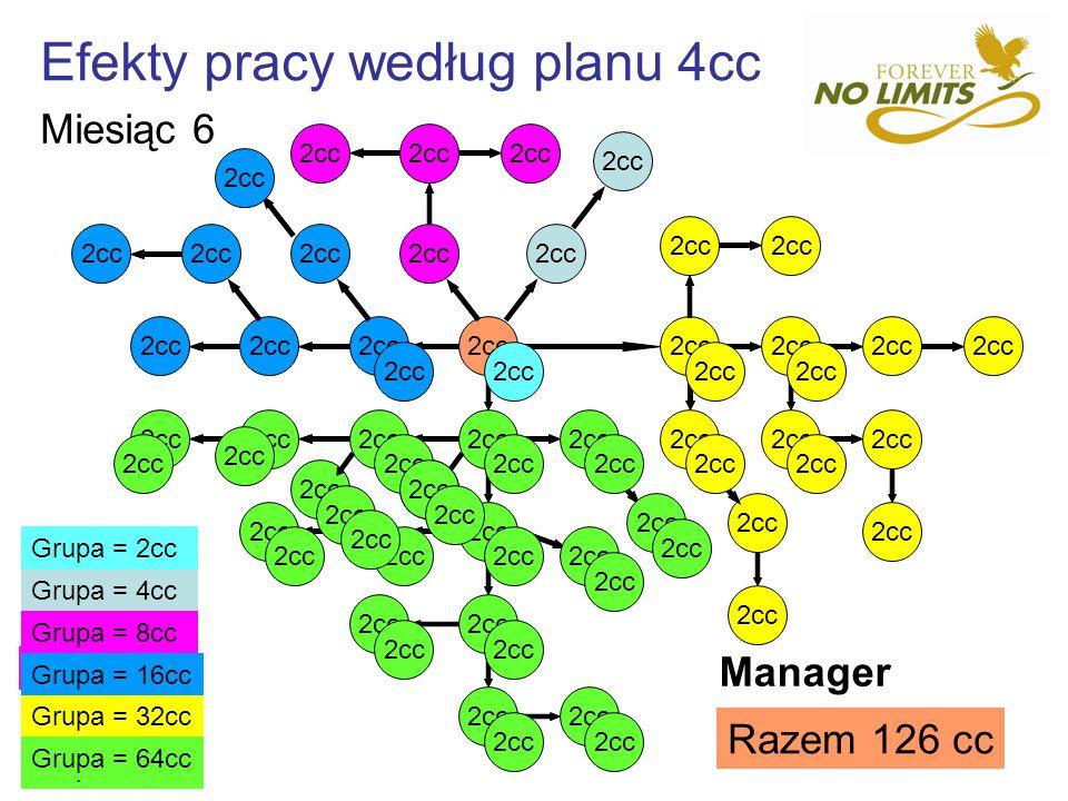 Efekty pracy według planu 4cc 2cc Grupa = 32cc Grupa = 16cc Grupa = 8cc Grupa = 4cc Grupa = 64cc Grupa = 8cc Grupa = 16cc Grupa = 32cc Grupa = 16cc Gr